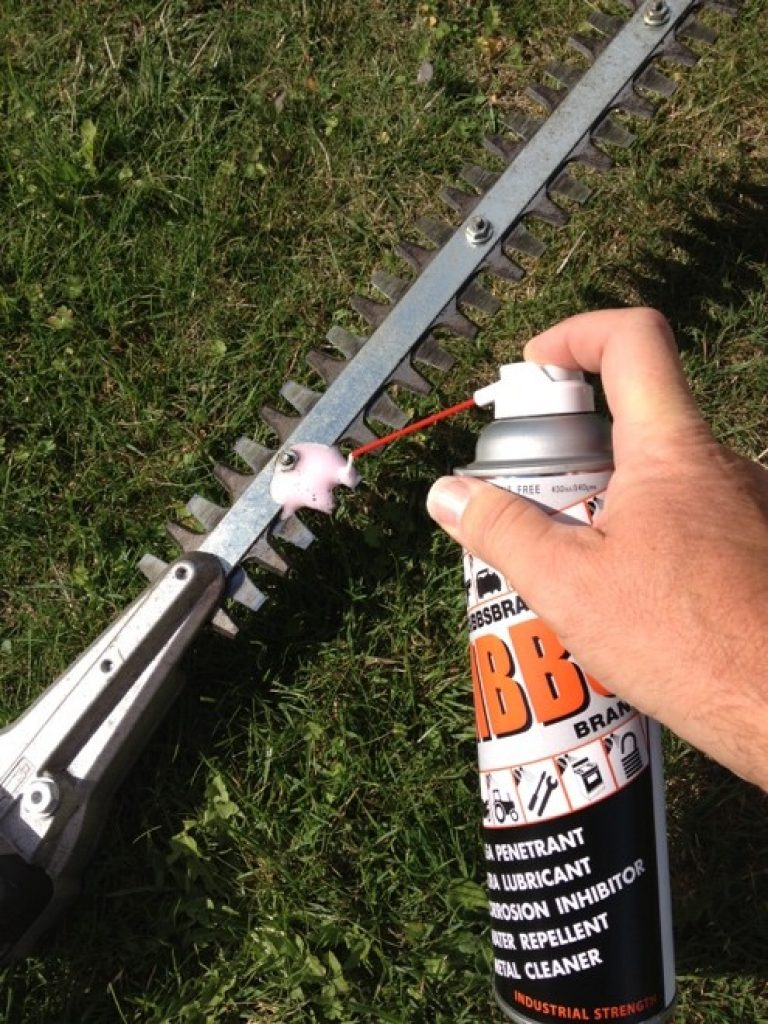 how to clean hedge trimmer blades