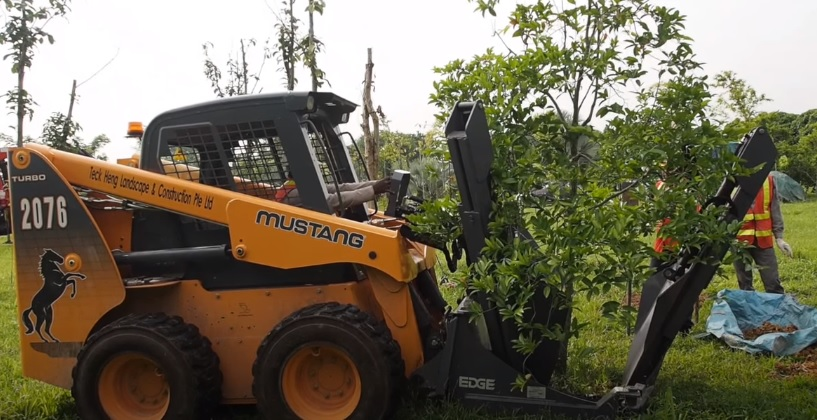 how to relocate trees with a machinery