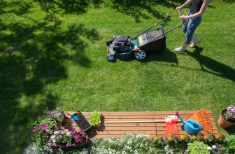 6 Easy Lawn Maintenance Tips for Beginners